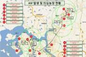 경기 파주서 아프리카돼지열병 확진 2건 잇따라
